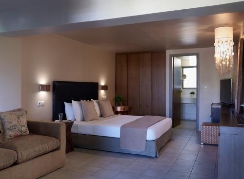 aegeon hotel sounio 41